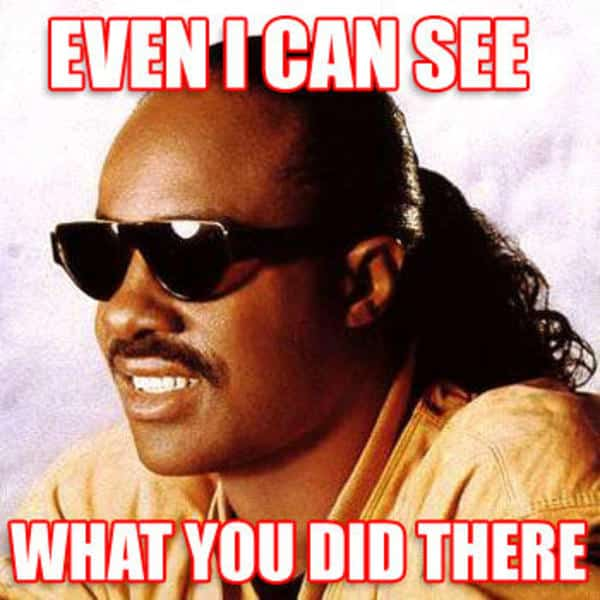 stevie wonder even i can see what you did there. hamilton lindley blog.